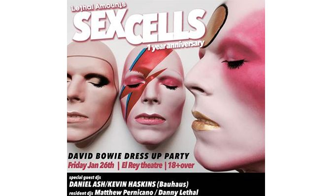 sex-cells-1-year-anniversary-tickets_01-26-18_17_5a4ead9c03b88.jpg